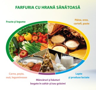 farfuria-sanatoasa-890x834